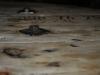 Kabeltrommeltisch aus Holz als Couchtisch